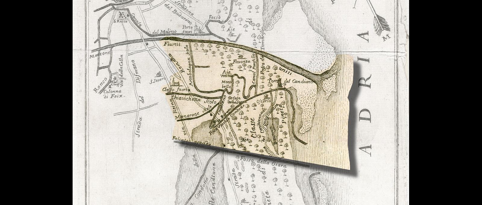 1764#Ginanni 1764